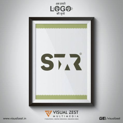 <h4>Negative Space Star<br/>Logo Design</h4>