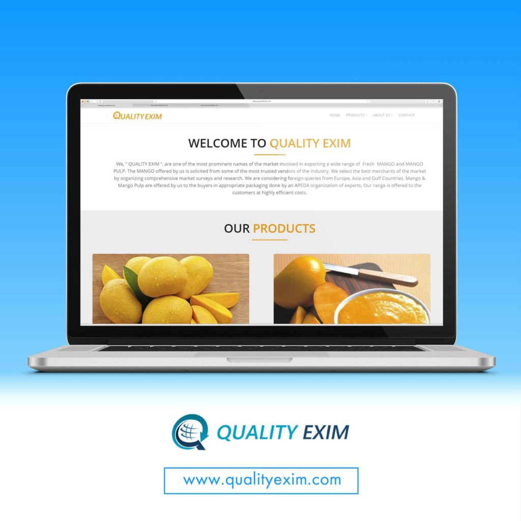 <h4>Quality Exim<br/> Web Design</h4>